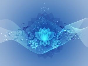 medit7